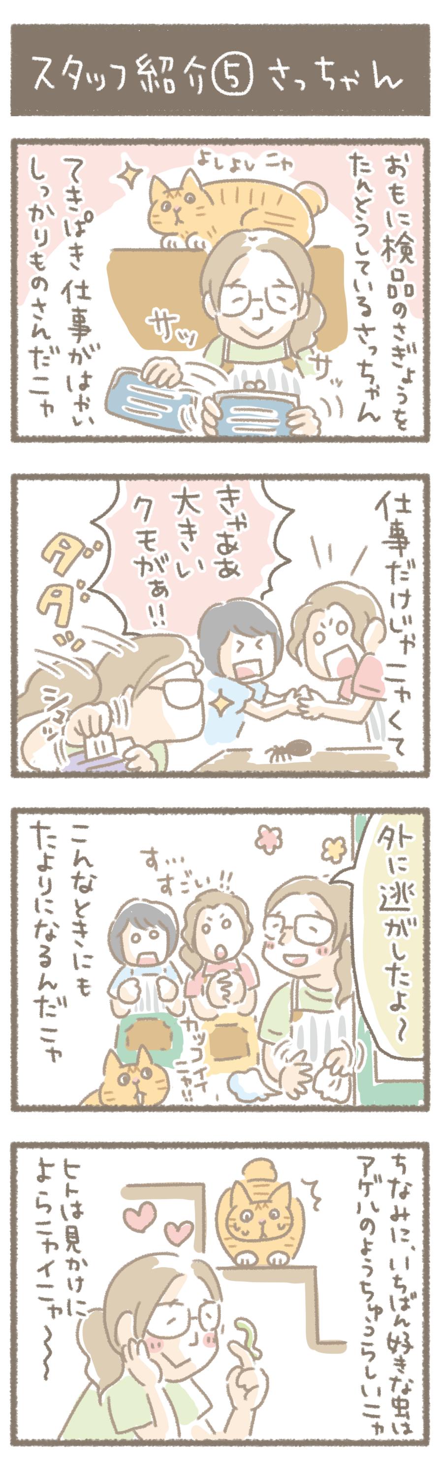 スタッフ紹介⑤さっちゃん